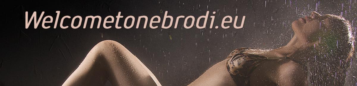 welcometonebrodi.eu
